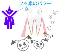 フッ素の効果でむし歯予防