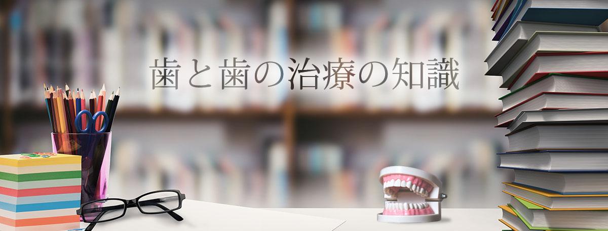 歯と歯の治療の知識