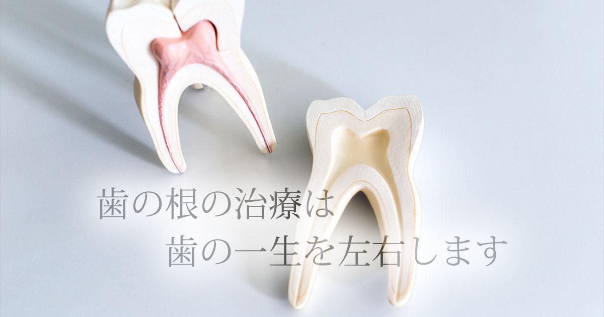 歯の根の治療は歯の一生を左右します